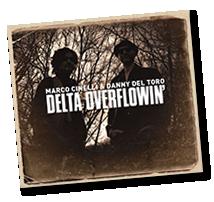 deltaoverflowin